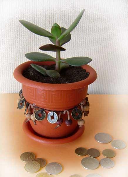 Горшок с цветком и монеты