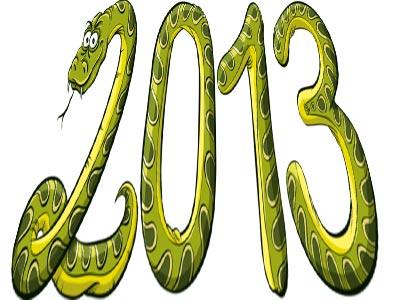 2013 год змеи
