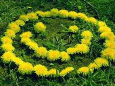 Солнце из цветов