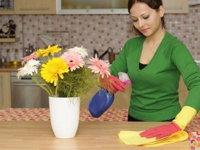 Женщина наводит чистоту