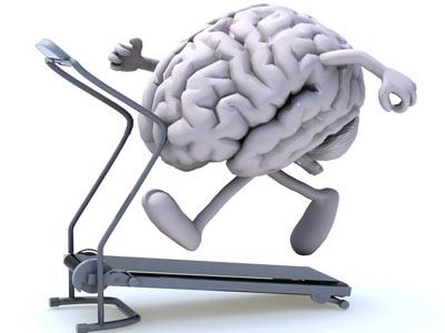 Мозг испытывает физические нагрузки