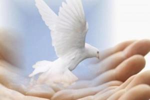 10 способов как стать гением —  Духовный интеллект