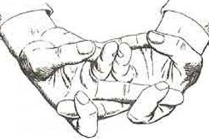 Мудра «Моление о счастье»