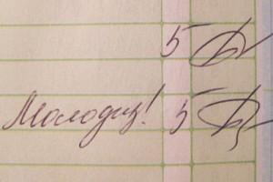 Пятерка в дневнике, или Отличница по жизни
